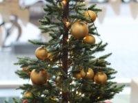 Hvor skal du gøre af dit juletræ?