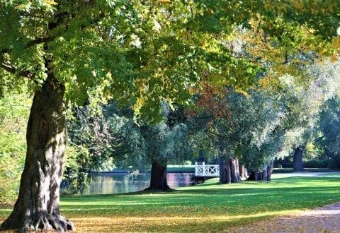 Smukke Frederiksberg og efterårsfarverne