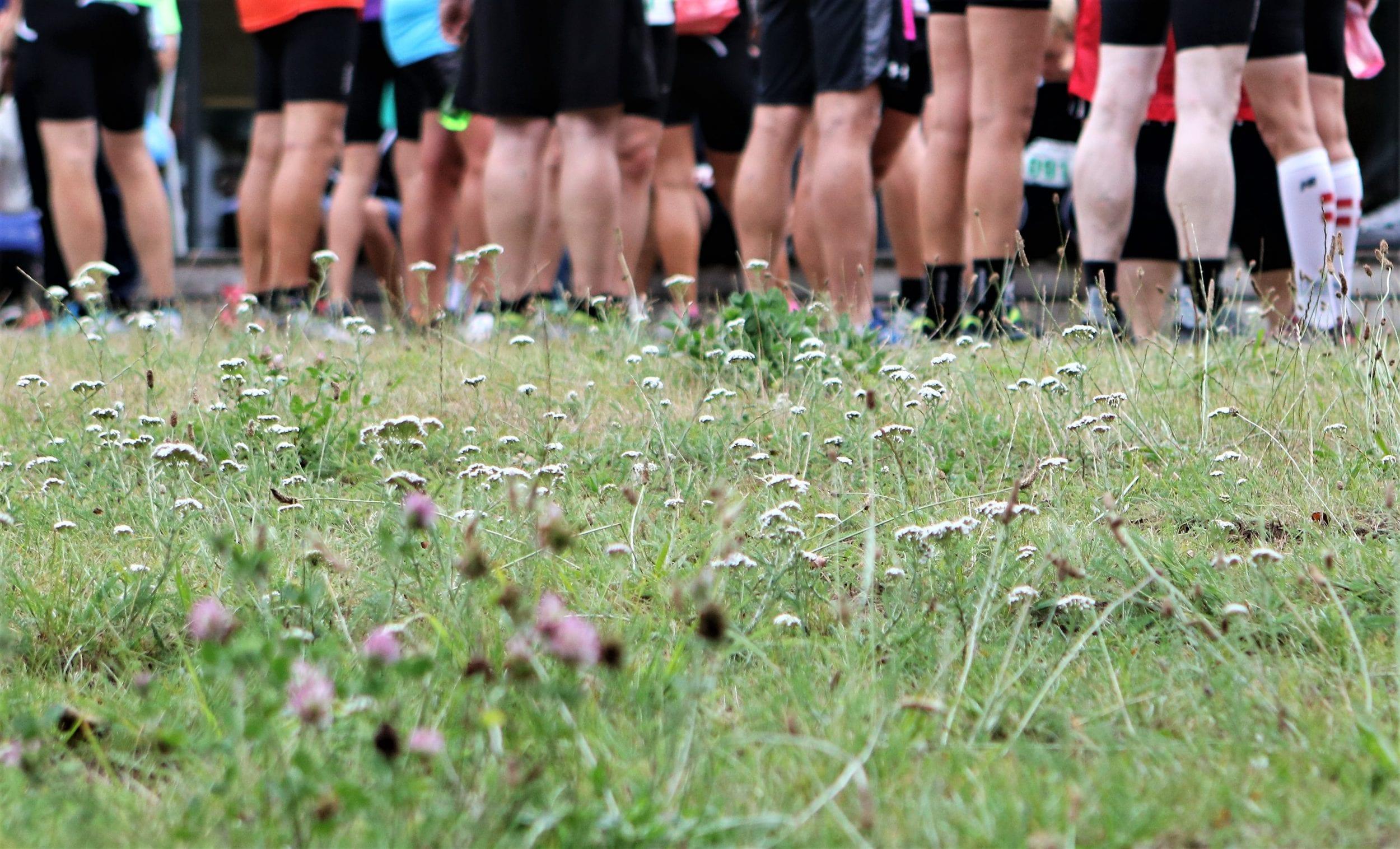 Frederiksberg Have lukkes for løb