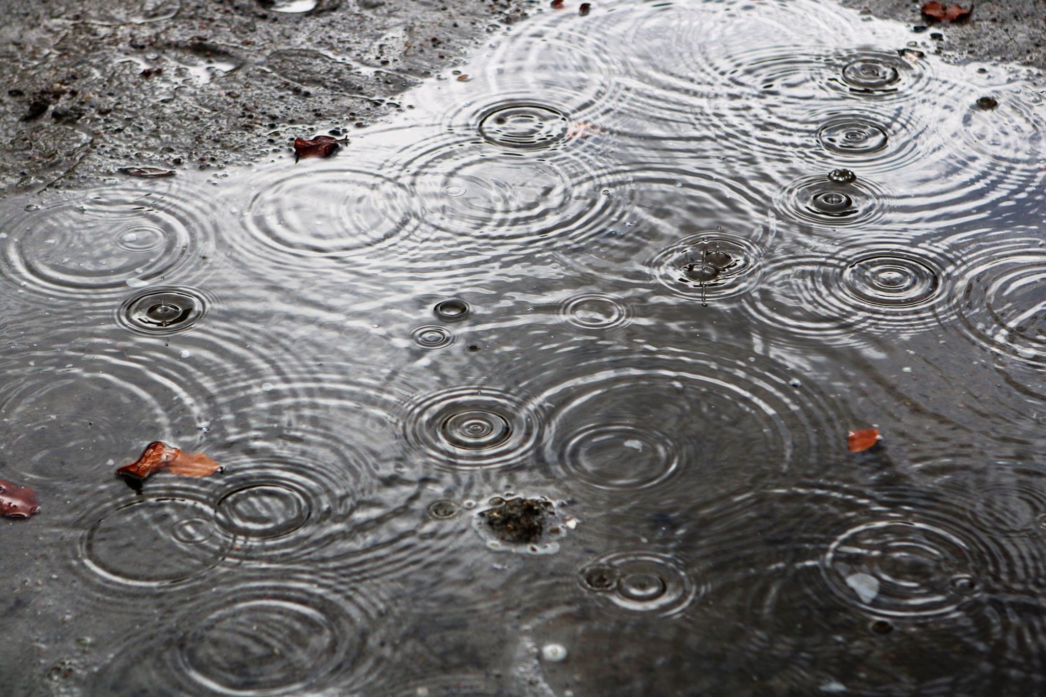 Giv din mening til kende om regnvand på Frederiksberg