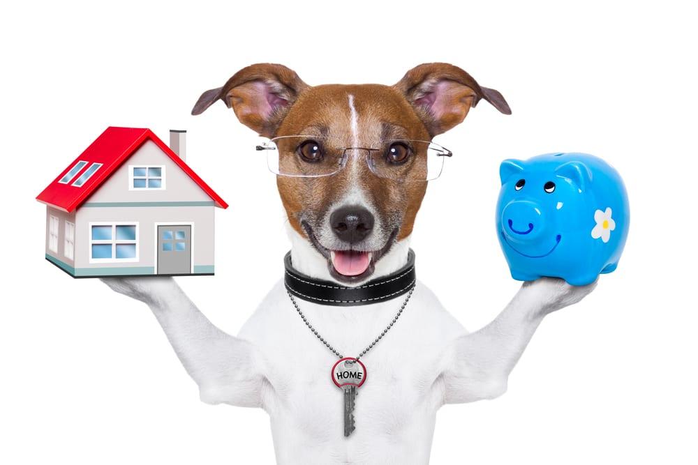 5 tips til at øge din boligs værdi inden salg