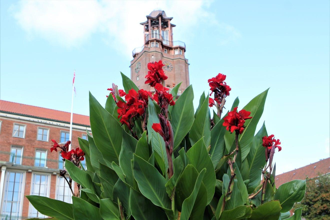 Genåbning af rådhusets renoverede tårn